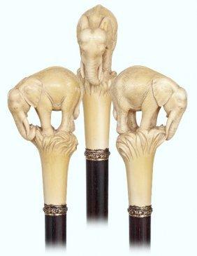 98. Ivory Elephant Cane-ca. 1890-substantial Ivory Knob
