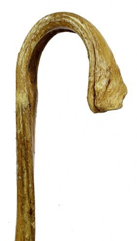 152. Bull Penis Cane- Ca 1950- A Nice Example Of This