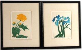 Lithograph, Blooming Chrysanthemum, Fernando Torm