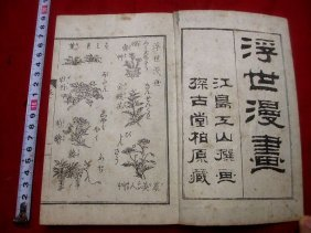 Japanese Ukiyoe Ehon Woodblock Print Book Ukiyomanga