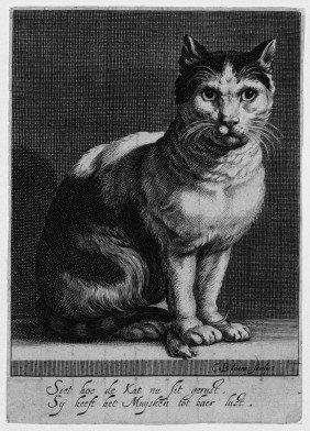 Bloemaert, Cornelis: Katze Mit Einer Maus