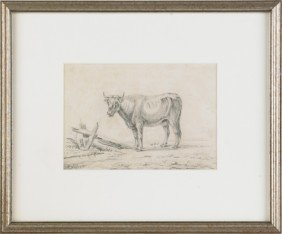 Three Continental Etchings Of Cows, 19th C., Larg