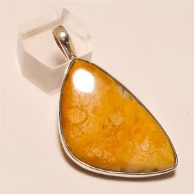 Fossil Coral Pendant Solid Sterling Silver