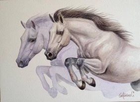 The Kings Stallion-watercolor On Archival Paper