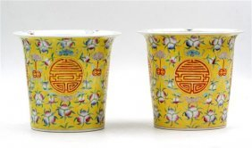 Pair Of Yellow Flower Pots