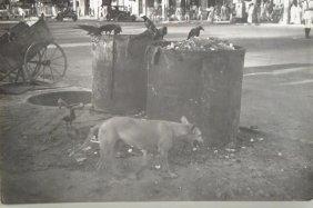 """Cecil Beaton, British, 1904-1980, """"in Calcutta"""","""
