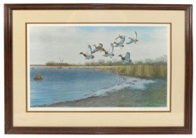 Wildlife Print, Untitled, By Artist Gregory C. Ca
