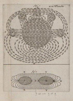 Descartes (Ren�) Les Principes De La Philosophie,