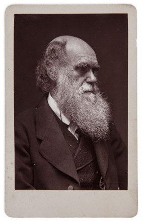 Darwin (charles).- - Carte-de-visite Portrait Of