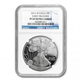 1 Oz Proof Silver American Eagle Pf-69 Ngc (random Year