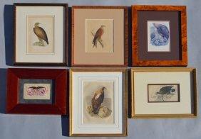 Lot Of Framed Eagle Artwork