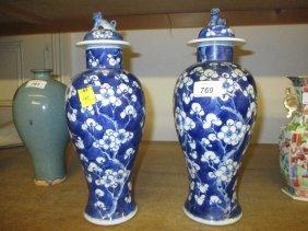 Pair Of 19th Century Chinese Blue And White Prunus