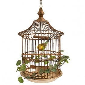 Taxidermy Bird, Full Body Mount Of A Caged Parakeet