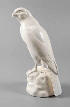 Roesler Raubvogel