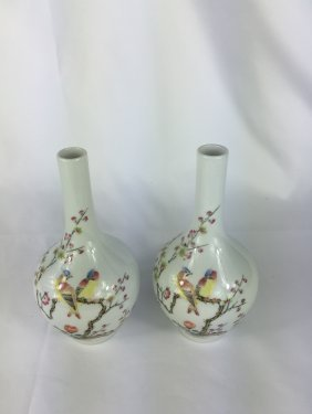 Pair Of Chinese Porcelain Bottle Vases