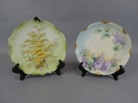 Lot Of 2 Finely Painted Bavarian Cabinet Plates