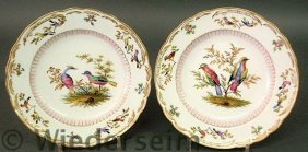 Fine Pair Of Colorful Meissen Bird Plates With Gi