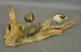 Three Carved Pintail Ducks On Driftwood By Carl
