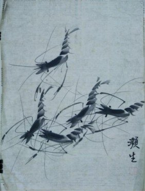 Set Of 5 Chinese Unmounted Paintings Of Shrimp