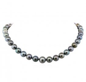 14kt White Gold 10mm-13mm Tahitian Cultured Black Pearl