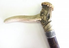 Walking Stick With An Engraved Bone Handle - Long Nose,