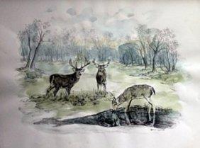 Lithograph - Wild Life Ii - Ann Hyun