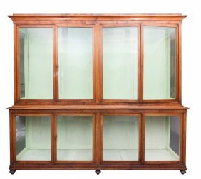 A Very Large 19th Century Mahogany Museum Display