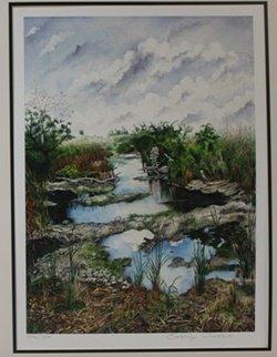 "Lithograph ""florida Everglades Grasses"" After Cassie"