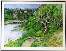 """Lithograph """"skibo Castle The Twisted Tree"""" After Cassie"""