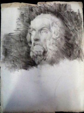 Study Of Plato Bust