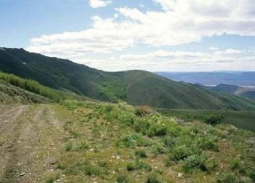 GOV: NV LAND, 640AC. $129,441@$1,297/mo HUGE ACREAGE!