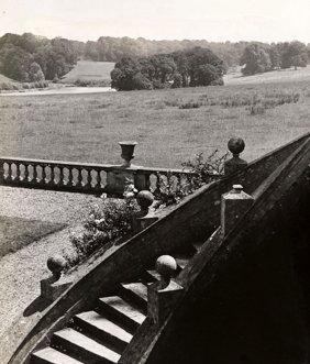 Bill Brandt, Composition In Wiltshire Estate