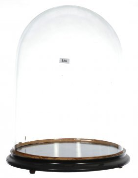 """17"""" X 12"""" Vintage Glass Display Dome On Wooden Ebony"""