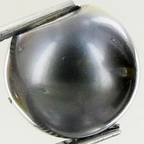 12.84ct Freeform Tahitian Black Pearl
