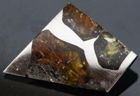 11.3ct Esquel Meteor Pallasite Olivine Space Peridot