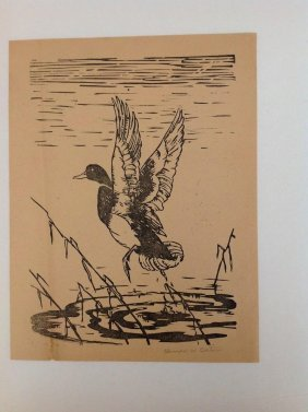 Clarence W Bolton Signed Print Duck In Fight, Print