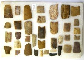 37 Paleo Bases Many Western Examples