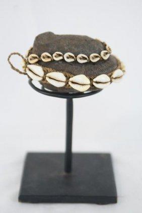 Fossilized Ammonite Covered Matrix Shaman Papua