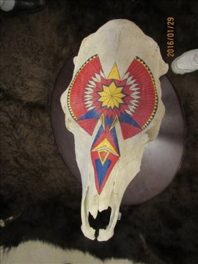"Hand Painted Steer Skull 19"" Long"