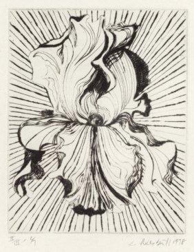 Lowell Nesbitt (american, 1933-1993) Iris, 1978