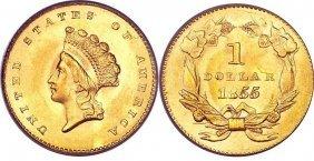 Superior 1855 $ 1 Gold Princess Coin